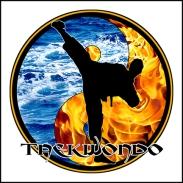 guys taekwondo image FW